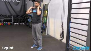 alphaband-squat