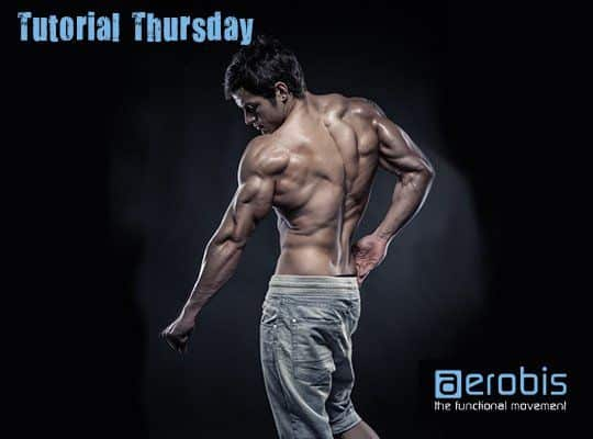 Tutorial Thursday 20  Bodybuilding 1